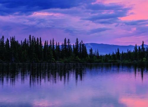 Boreal forest and one of its rivers | Greenpeace