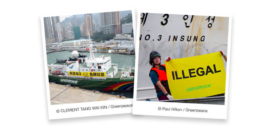 "Two images in faux-polaroid frames. The first depicts a Greenpeace ship. The second shows an activist holding a sign that says ""Illegal"" in front of a fishing vessel."